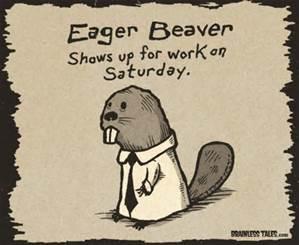 eager beaver.jpg